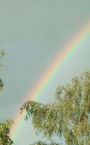 regnbåge1